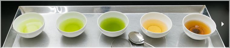 新緑園のお茶各種